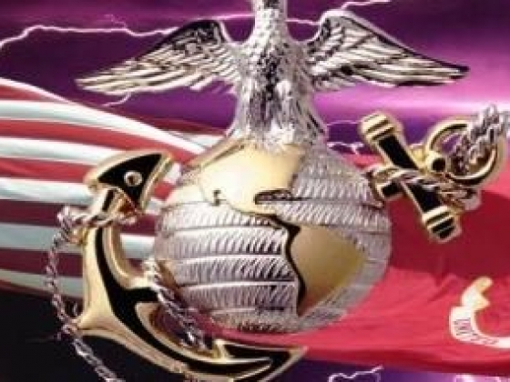 Marine Corps Salute rear window graphic